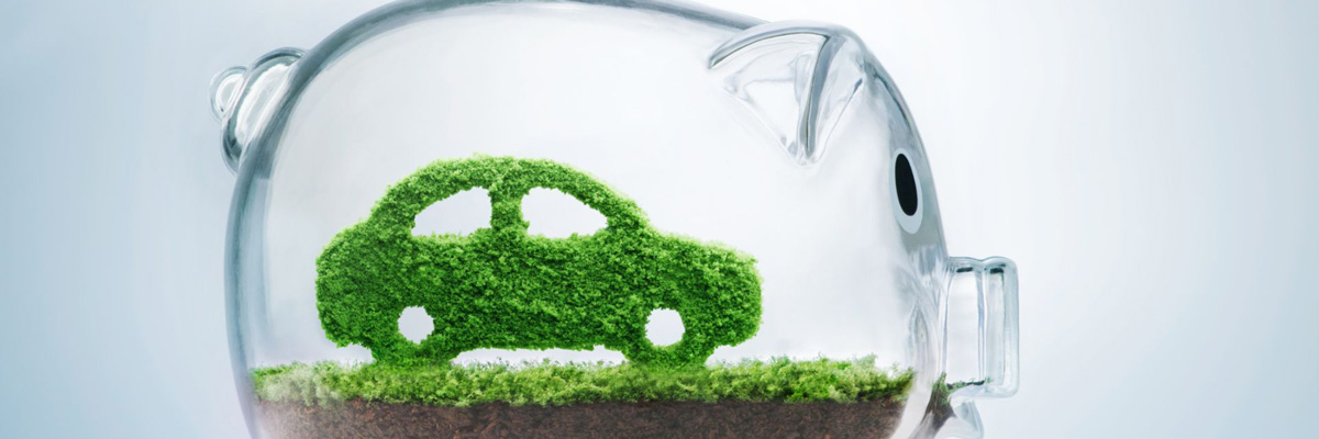 Sustainability and Car Sharing